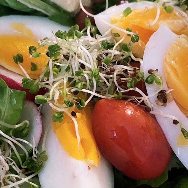 A - ENSALADA hUERto con huevo